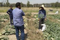 مصاحبه با کشاورزان