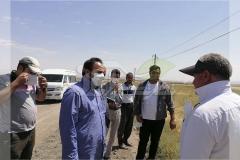 بازدید و مشاوره مزرعه گندم در مایان تبریز