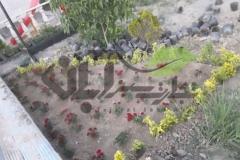 کاشت پرچین و گل