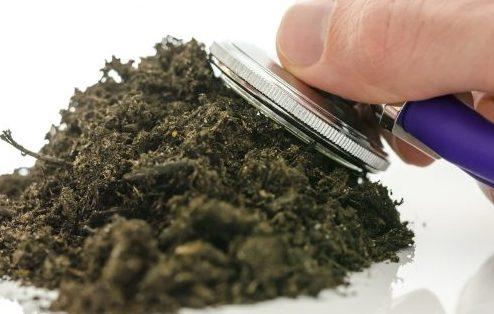ضد عفونی کردن خاک