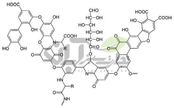 فرمول شیمیایی هیومیک اسید