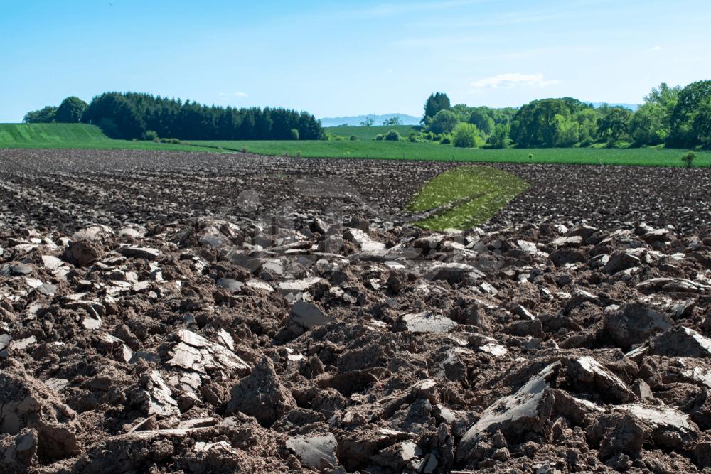 خاک سنگین رسی مزرعه شخم خورده