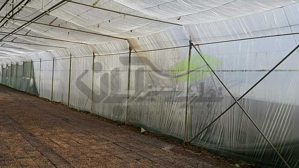 اضافه کردن لایه به دیواره گلخانه