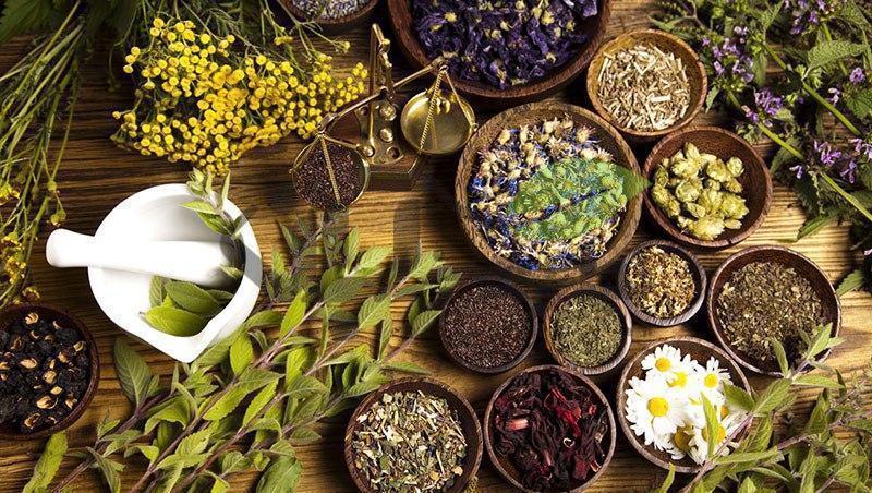 گیاهان داروی