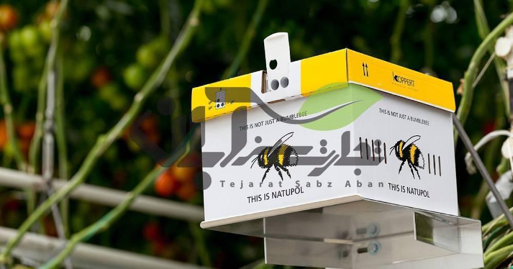 کندو عسل در گلخانه جهت گرده افشانی