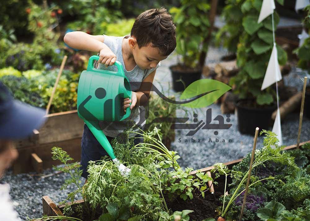 آبیاری گیاه و باغبانی