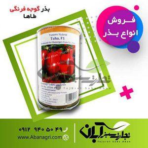 بذر گوجه فرنگی طاها