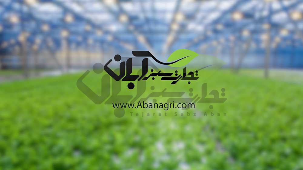 خدمات سمپاشی با پهپاد کشاورزی تجارت سبز آبان