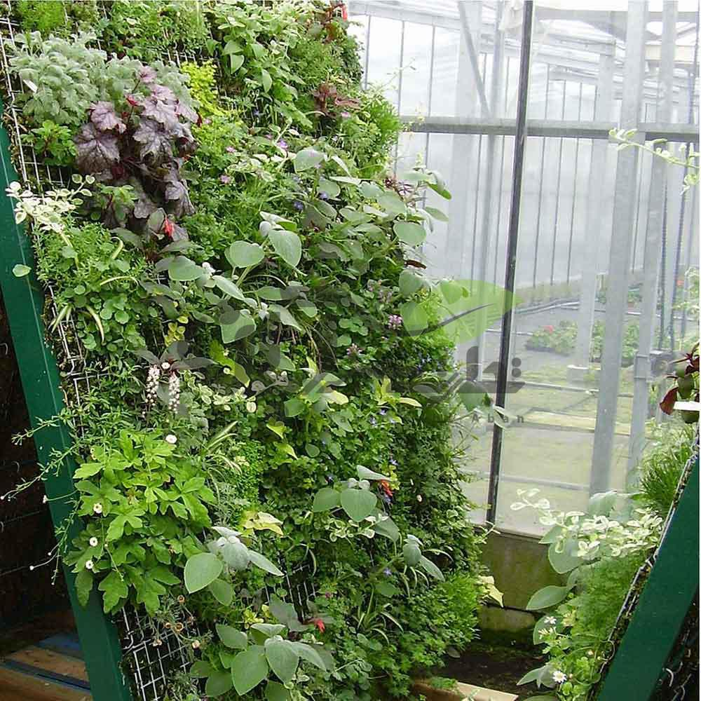 کاشت عمودی سبزیجات
