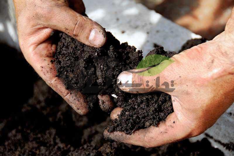 تست خاک مزرعه