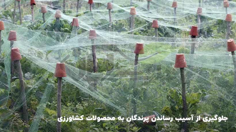 استفاده از شید و سایه بان  جهت جلوگیری از آسیب پرندگان