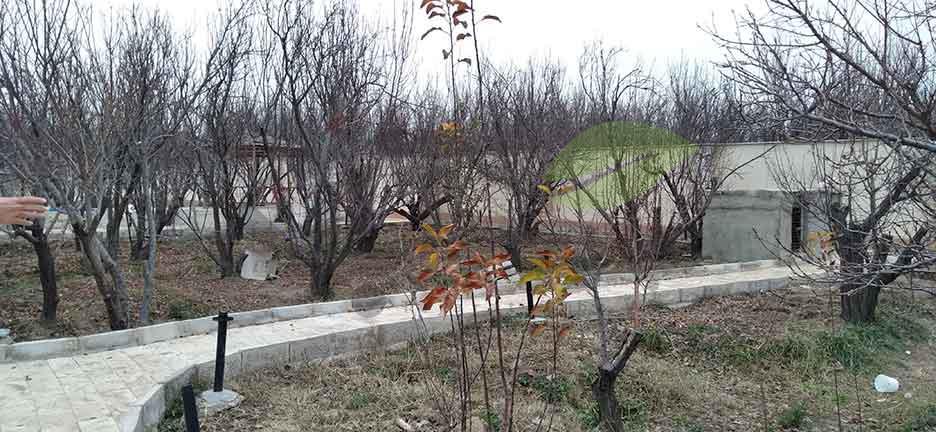 باغچه درخت میوه