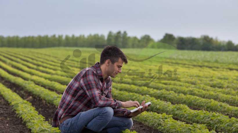 کار کردن در رشته گیاهپزشکی